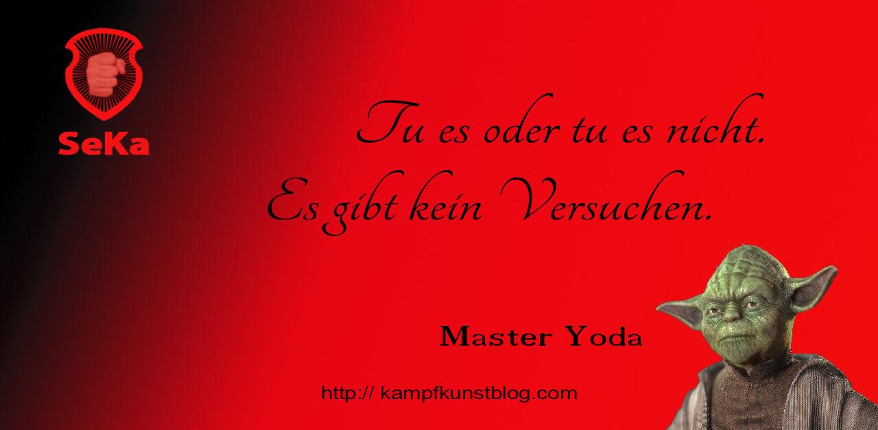 Tu Es Oder Tu Es Nicht Master Yoda